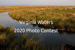 First Annual Virginia Waters Photo Contest for College and University Students