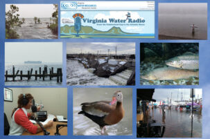 Virginia Water Radio's 500th Episode: Variety of Virginia's Water Story